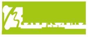 Logo-Athena-white